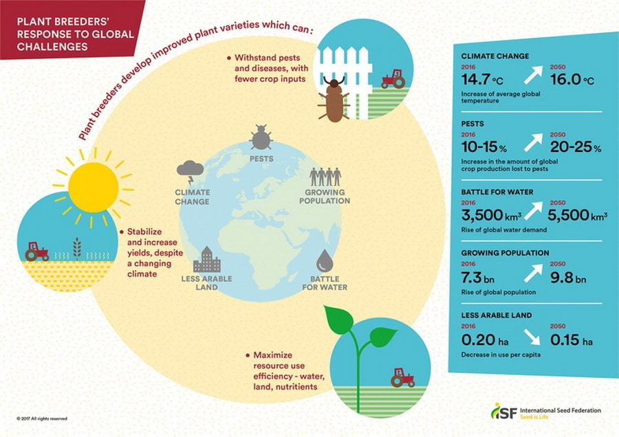 Plant Breeding Innovation Can Help Solve Global Challenges